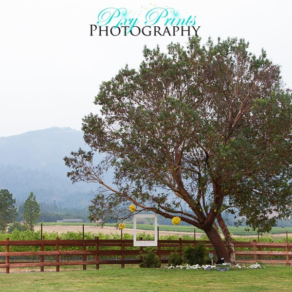 Applegate Valley Ranch Wedding